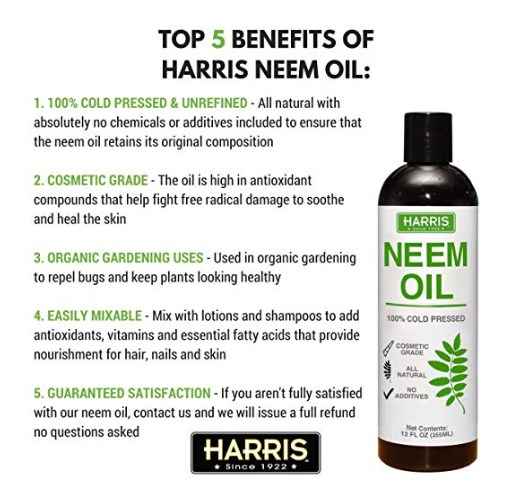 How To Use Neem Oil in Your Garden – ElliMacLand